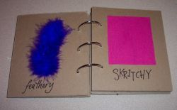 This a great idea to start a touch book. This web site says it intended for a blind child, but it can also be used for a child on the autism spectrum as a way to learn about different textures.