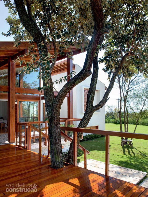 """Casa incorpora árvore no deck e se beneficia de sua sombra_O deck de ipê incorpora o cambará. """"O terreno apresentava poucas árvores residuais da vegetação original. Como esta era a mais significativa, foi mantida"""", afirma o paisagista Luciano Fiaschi."""
