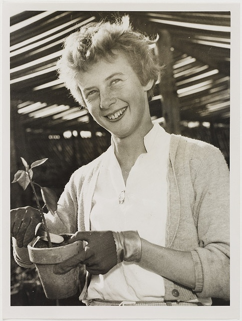 Betty Cuthbert, c. 1950s, by Ted Hood by State Library of New South Wales collection, via Flickr