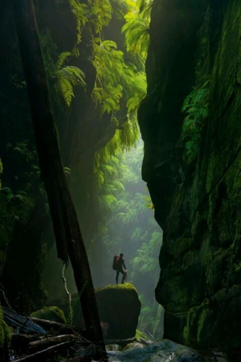 Hidden Canyon, Blue Mountain Australia
