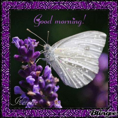Image result for good morning blingee quotes and sayings
