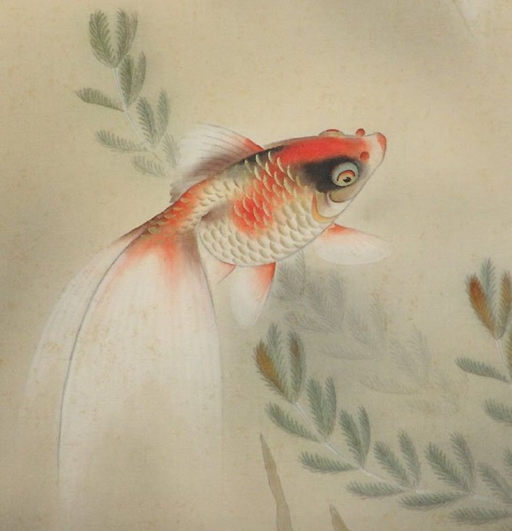 14 best gold fish tattoos images on pinterest fish for Goldfish tattoo meaning