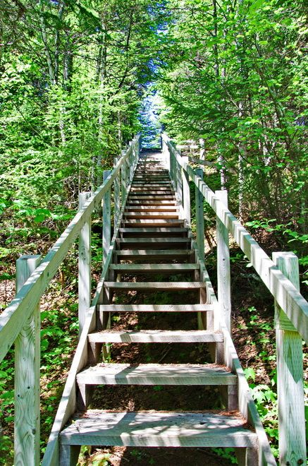 Some of the 2,200 stairs on the Alexander Murray Trail in Central Newfoundland