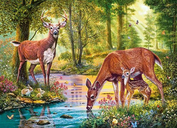 187 best puzzle images on pinterest pi ces de puzzle - Images tigres gratuites ...