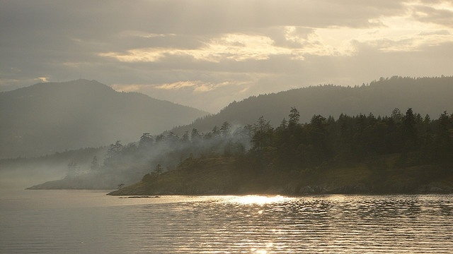 Saltspring Island, B.C. Where part of my heart lives.