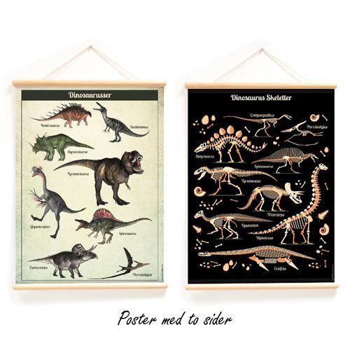 Vintage skoleposter -Dinosaurer og skeletter