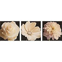 Heart of House Luxe Black and White Flowers Triptych Canvas.