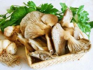 Cappellidi champignon tartufati   Carciofi in padella con porri e salsiccia   Carciofi ripieni con contorno di pisel