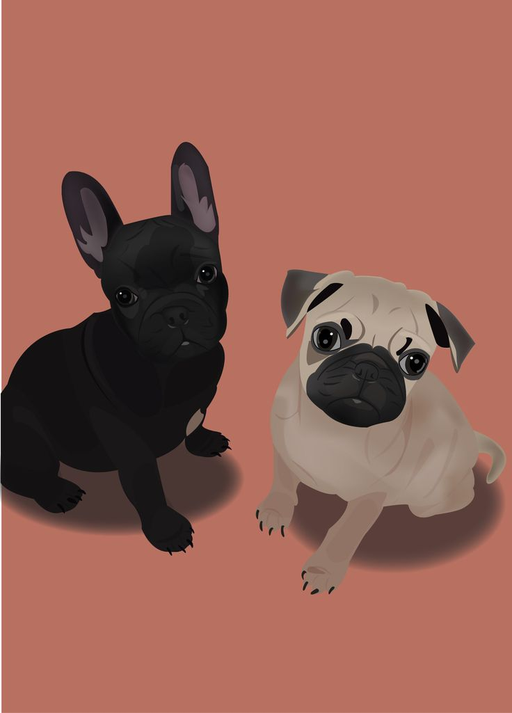 Dog / Illustrator / design / photoshop / 강아지 / 일러스트 /그림 / 프렌치불독 / 퍼그  -designer urim
