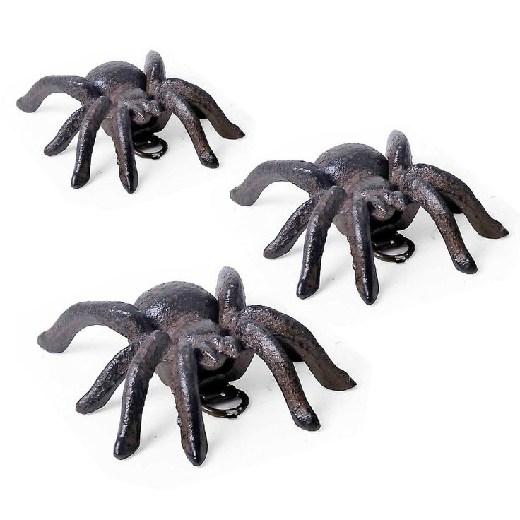 Vintage Cast Iron Wall Mounted Garden Ornament Small Tarantula Spider #Gardens2you