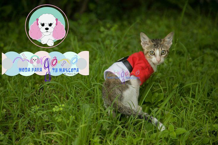 Mascota: Mau Talla: 0 Estampado y color: Pokébola (blanco con rojo).  Fotografía: Tatiana Rodriguez Diseño: América García