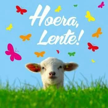 Hoera Lente
