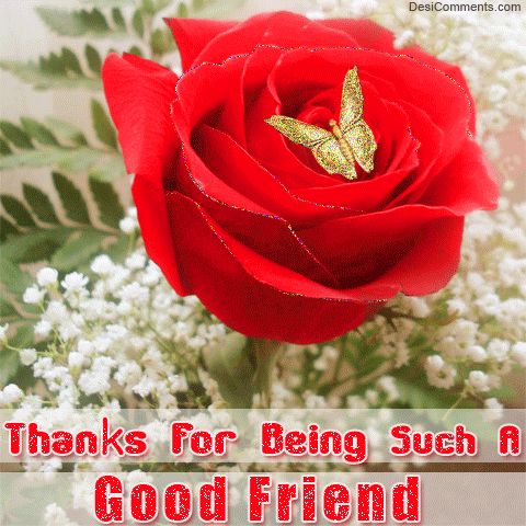 Thank you for being such a good friend friendship quote friend friendship quote friend quote red rose graphic