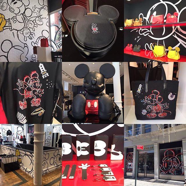 The entire #DisneyxCoach collection is a #MickeyMouse fan's dream. #DisneyStyle #DisneyFan #instadisney