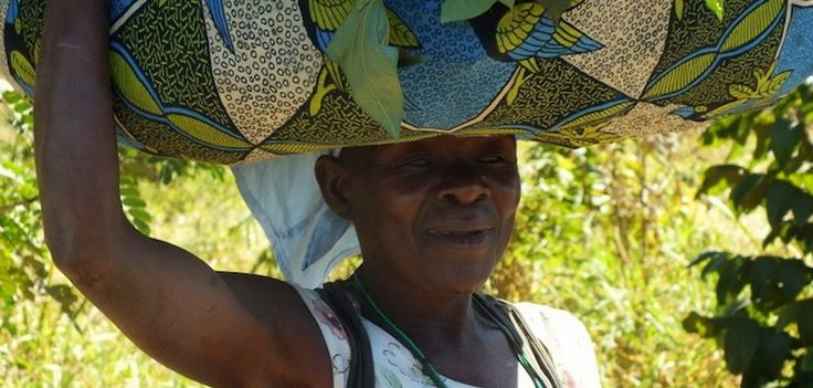 Get a taste of rural life in Africa by visiting Vinho community near Gorongosa National Park. A Gorongosa guide will take to you a school and a new local market. Experience first hand how your visit can make a difference in people's lives:http://www.gorongosa.org/plan-your-adventure/activities/trip-vinho-communityThanks to Tish Grant of Bushfind for this photo!