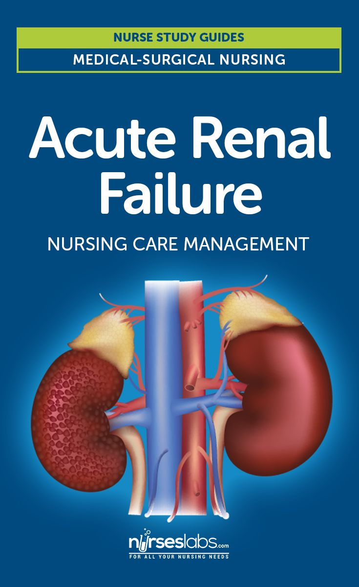 Acute Renal Failure Nursing Care and Management: Study Guide