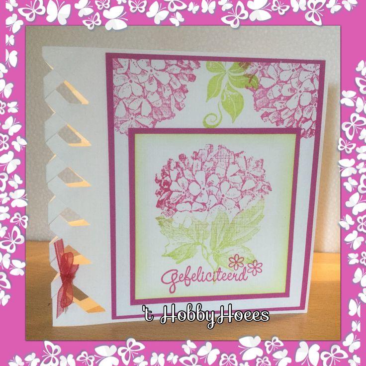 Braided Card. Gefeliciteerd kaart met de stempels van Different Colors: Gefeliciteerd, Hedera, Hortensia. Inkten: Color Box Razzberry en Citrine. 't HobbyHoees 12 april 2015