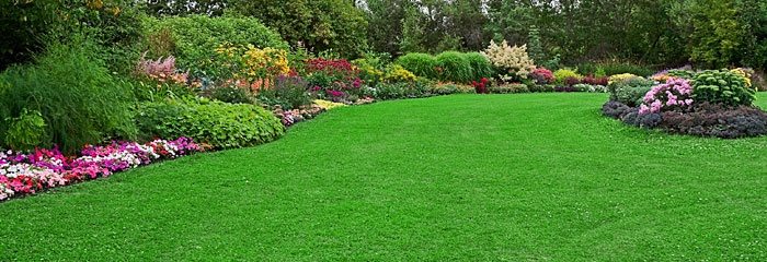 beautiful lawns at rutgers new brunswick campus pinterest lawn gardens and garden ideas
