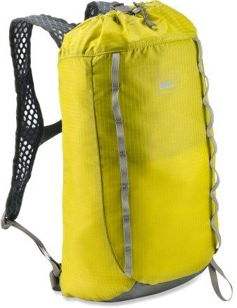 REI Flash 18 Pack. Holds a hydration bladder, and can be turned inside out as a stuff sack! Have this and love it!