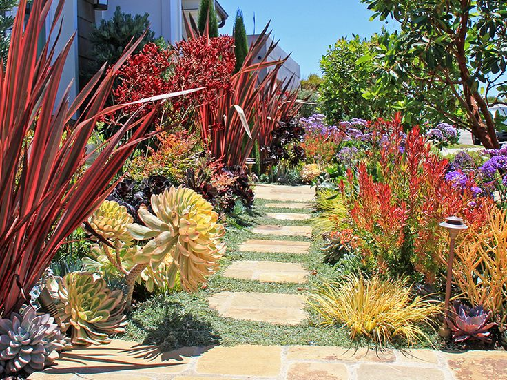 Ca friendly gardening solutions garden pathways pinterest garden solutions landscaping for Gardens in southern california