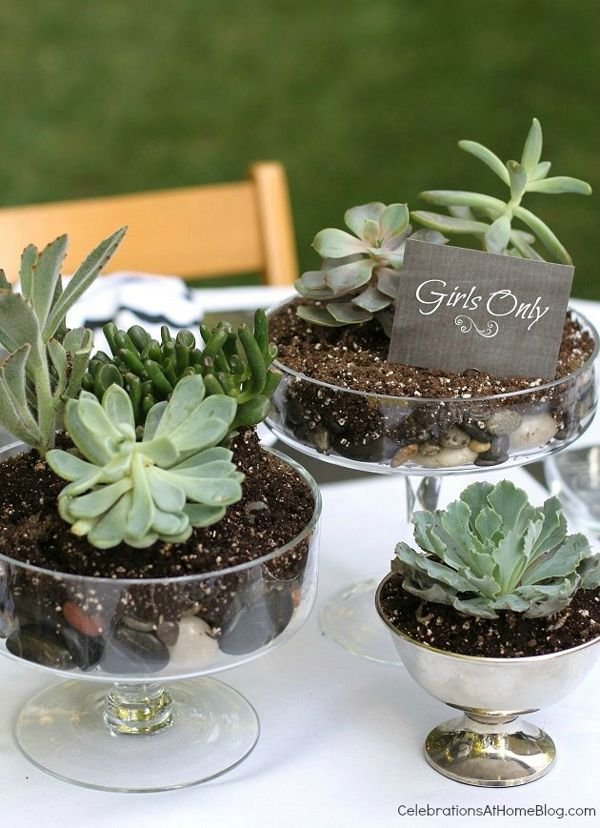 10 awesome centerpiece ideas | Succulents in cake stands