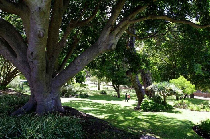 Enjoy strolling through the acres of beautiful gardens right on our doorstep at Seashells Yallingup, Western Australia #travel #holiday