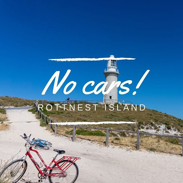 Did You Know Cars Are Not Allowed On Rottnest Island Australia