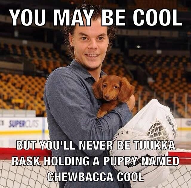 That fact it's named Chewbacca X'D gotta love Tuukka Rask #PucksandPups