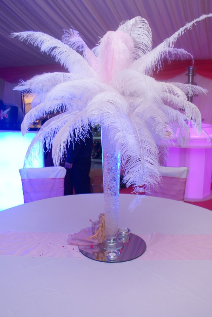 Barbie Party (sweet 16)