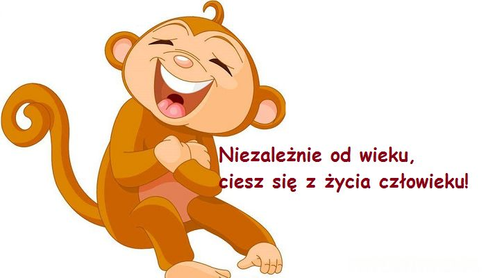 Małpka_sentencja
