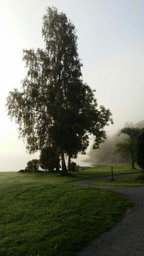 Tidig morgon Vann Bohuslän