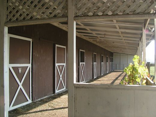 33 Best Images About Shedrow Barns On Pinterest A Shed