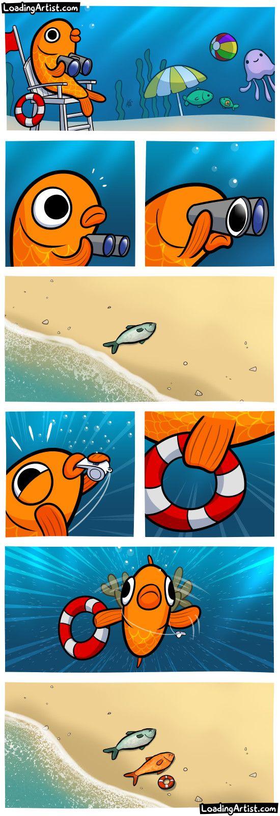 best 25 funny fish ideas only on pinterest dumb funny jokes