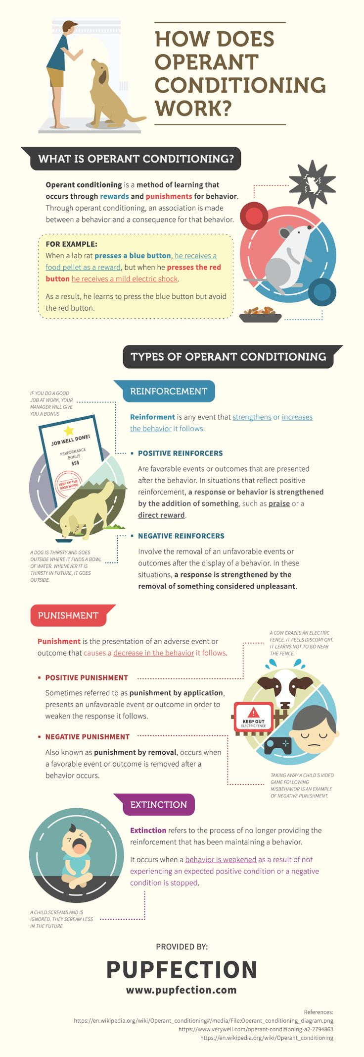 How does operant conditioning work