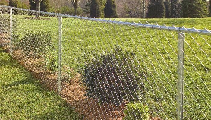 Chain Link Fence Chain Link Fence Fence Landscaping Backyard Fences