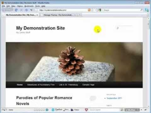 Remove TopSpace Wordpress How To