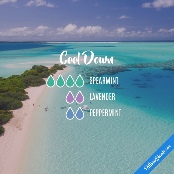 Cool Down - Essential Oil Diffuser Blend