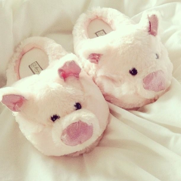 Used to have some pig slippers!
