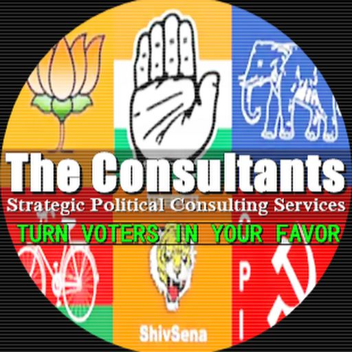 Political Consultant: Political Consulting services
