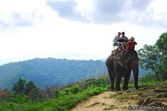 elephant trekking camps, thailand