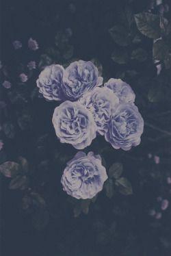 beleza Menina fresca bonita hippie moderno boho vintage jovem coração indie Grunge noite escuro do menino flor flores roxo natureza incrível naturais retro adolescente pastel escuridão Alternativa rad menina rad lilás pálido