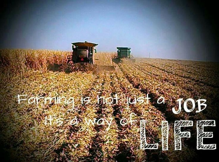 Incroyable Farmer Quotes And Sayings   Yahoo Image Search Results
