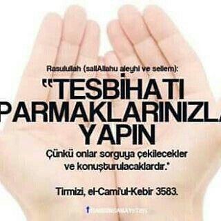 Tirmizi/el-Camiu'l-Kebir:3583