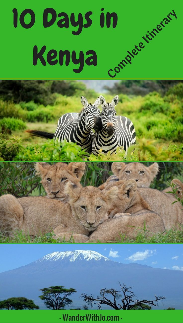 Are you traveling to Kenya? Well then, check out this ultimate Kenya travel itinerary filled with 10 day safari adventures across the country. As a wildlife enthusiast, for me, this is the only thing to do in Kenya, Africa! Enjoy :)