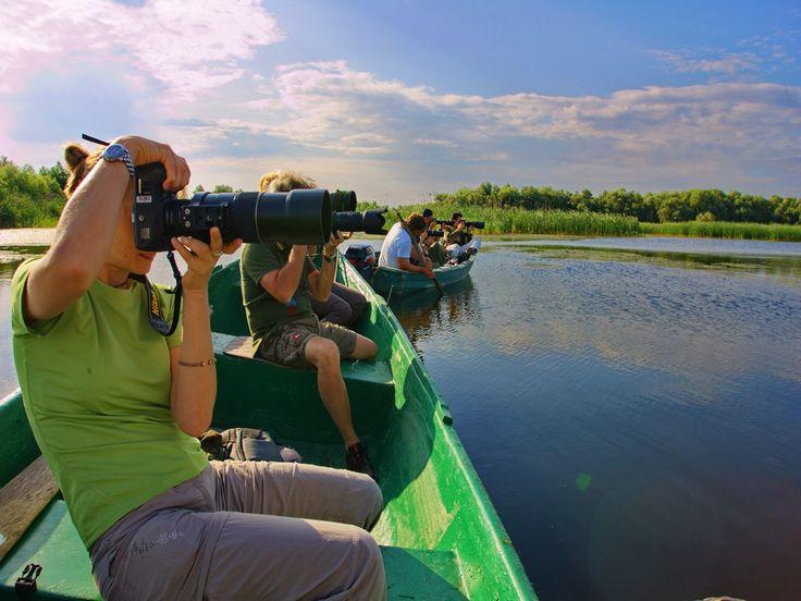 Bird Watching- Danube Delta http://tripsandtipsinromania.com/danube-delta/