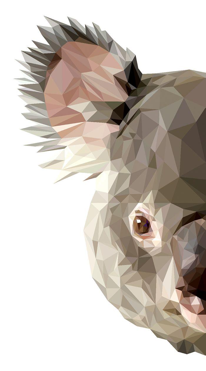 Koalafied on Behance