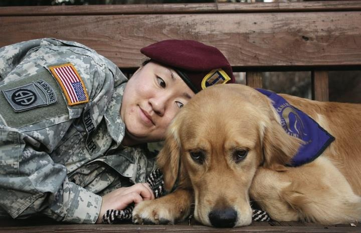 Always and forever by your side. Owen at Paws for Purple Hearts was Amanda's best medicine, and because of him, she has overcome her PTSD. 41 dogs donated, everyone!