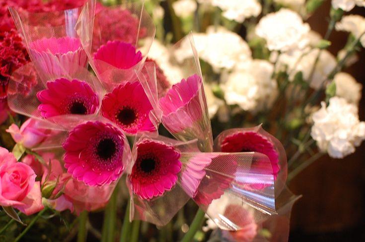 花保ちのいいガーベラ