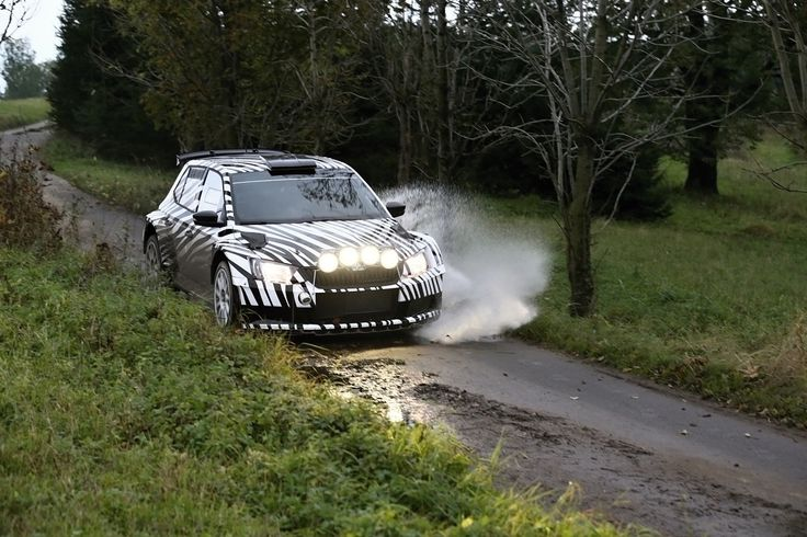Catching the ŠKODA Fabia R 5 in motion is no easy feat.