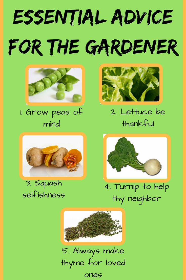 Funny Gardening Quotes And Sayings Useful Gardening Tips For All Gardeners Gardening Humor Gardening Quotes Funny Garden Quotes